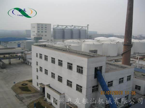 新疆菜籽油工程